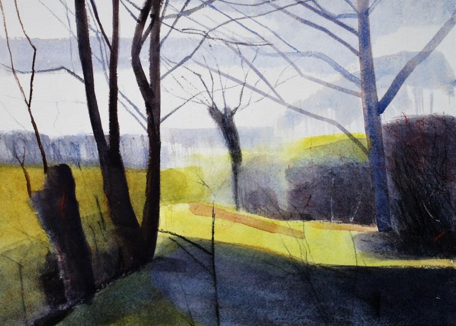 the woodbank